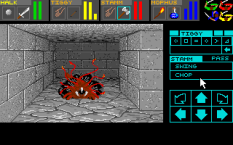 Dungeon Master PC DOS