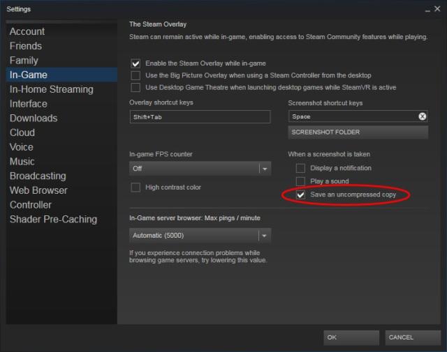 Steam screenshot options
