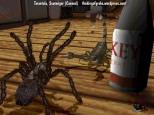 Tarantula - canned Scavenger game