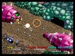 Viewpoint Neo Geo