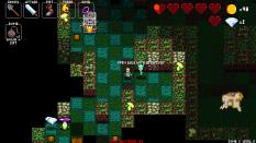 Crypt of the NecroDancer 26