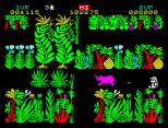 Sabre Wulf ZX Spectrum 04