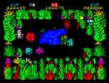 Sabre Wulf ZX Spectrum 06
