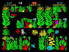 Sabre Wulf ZX Spectrum 10