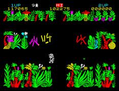 Sabre Wulf ZX Spectrum 11