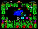 Sabre Wulf ZX Spectrum 13