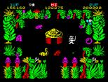 Sabre Wulf ZX Spectrum 14