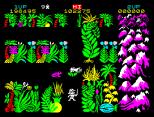 Sabre Wulf ZX Spectrum 17
