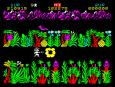 Sabre Wulf ZX Spectrum 19