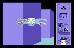 Scarabaeus C64 11