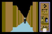 Scarabaeus C64 19