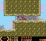 Shantae Game Boy Color 14