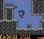 Shantae Game Boy Color 16