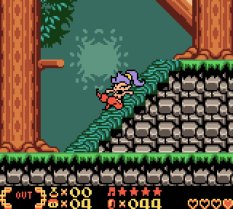 Shantae Game Boy Color 22