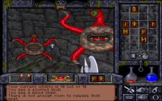 Ultima Underworld 2 PC 05