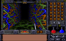 Ultima Underworld 2 PC 15