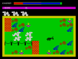 Wriggler ZX Spectrum 03