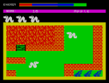 Wriggler ZX Spectrum 06