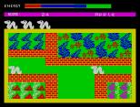 Wriggler ZX Spectrum 07