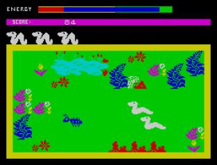 Wriggler ZX Spectrum 12
