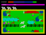 Wriggler ZX Spectrum 13