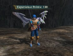Baten Kaitos Eternal Wings GC 66