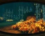 Bioshock 2 PC 24