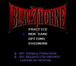 Blackthorne SNES 02