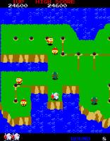 Dig Dug 2 Arcade 16