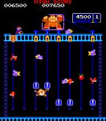 Donkey Kong Jr Arcade 10