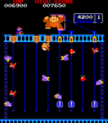 Donkey Kong Jr Arcade 11