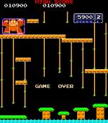 Donkey Kong Jr Arcade 20