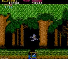 Ghosts N Goblins Arcade 10