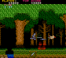 Ghosts N Goblins Arcade 11