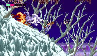 Strider Arcade 23