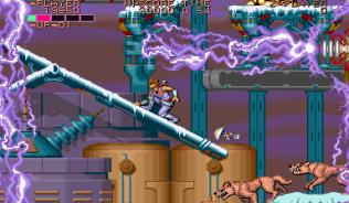 Strider Arcade 27