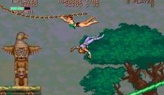 Strider Arcade 66