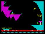 Bugaboo ZX Spectrum 14
