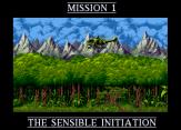 Cannon Fodder Amiga 03