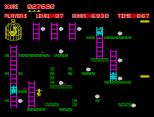 Chuckie Egg ZX Spectrum 17