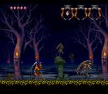 Demon's Crest SNES 014