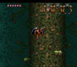 Demon's Crest SNES 061