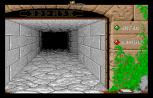Dungeon Master Atari ST 02
