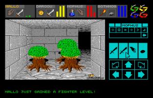 Dungeon Master Atari ST 09