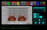 Dungeon Master Atari ST 14