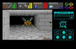 Dungeon Master Atari ST 17