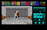 Dungeon Master Atari ST 25