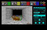 Dungeon Master Atari ST 41