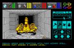 Dungeon Master Atari ST 49