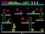 Automania ZX Spectrum 08